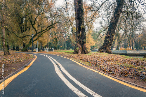 Foto Murales a deserted bike path in the autumn morning city park
