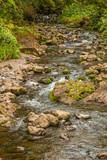 Scenic Tropical Stream Near Hana Maui - 209927560