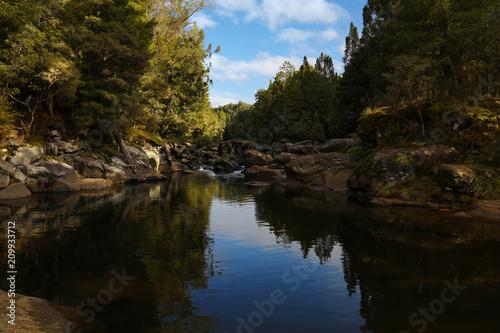 Foto Murales McLaren falls park