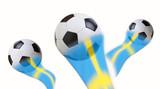 Football soccer flagg  - 209944117
