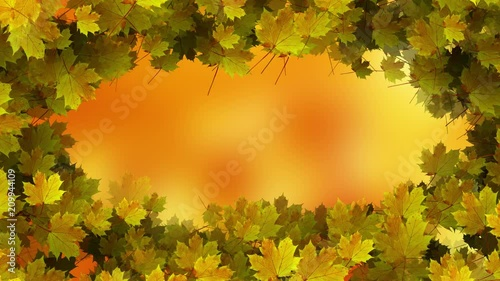 Sunny yellow gold colored autumn season leaves decoration on blurry bokeh copy space background. Selective focus used.