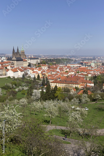 Widok na wiosnę Praga miasto z zieloną naturą i kwiatonośnymi drzewami, republika czech