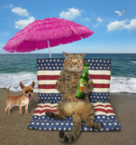 The cat with a bottle of beer sits on a air bed under a pink umbrella on the beach. The dog is next to him. - 209976333