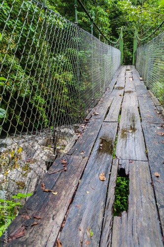 Foto Murales Suspension bridge at the hiking trail Sendero Los Quetzales in National Park Volcan Baru during rainy season, Panama.