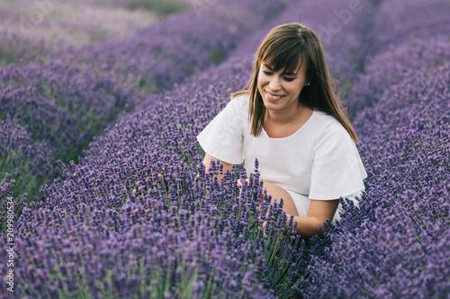 Florist woman picking lavender flowers - 209980534