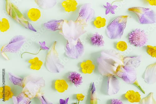 Fotobehang Iris flower pattern background of wildflowers top view, flat lay.