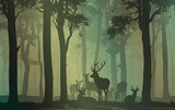 natural background with forest silhouette with herd of deer - 210011135