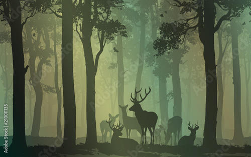 natural background with forest silhouette with herd of deer