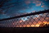 Sunrise and fence - 210020197