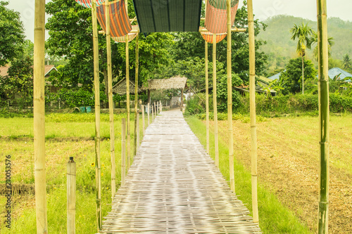 A bamboo walkway on a green field, a beautiful field.