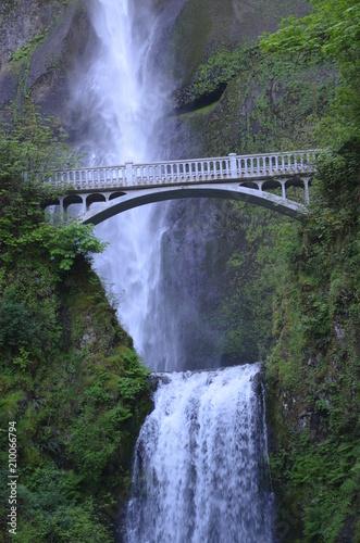 multnomah falls - 210066794
