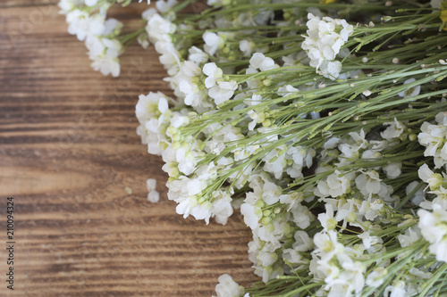 Foto Murales Bouquet of beautiful meadow flowers on a wooden background. Spring-summer blooming background. Border of white flowers. Floral background with copy space. Flat lay.