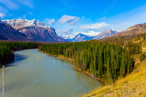 Abraham lake and autumn forests