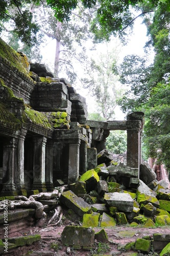 TaProhm Temple near Angkor Wat in Siem Reap, Cambodia - 210156373