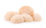 Lion mane mushroom isolated on white background - 210168545