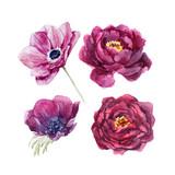 Watercolor floral vector set - 210216360