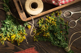 Drying medicinal plant tutsan - 210217701