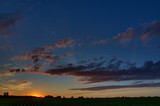 Twilight sky with clouds at dawn over a field with agricultural plantations.