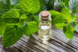 A bottle of melissa essential oil with melissa twigs - 210225389