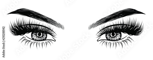 Hand-drawn woman's sexy makeup look with perfectly perfectly shaped eyebrows and extra full lashes. Idea for business visit card, typography vector. Perfect salon look