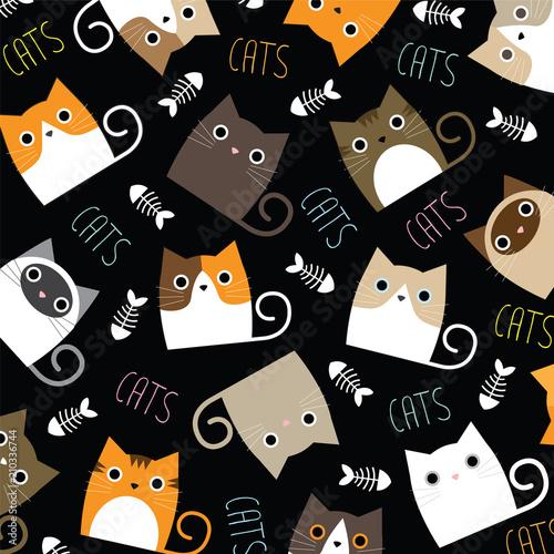 Fototapeta Cute Cats Wallpaper