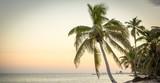 Tranquil Beach Scene - 210353940