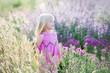 Leinwanddruck Bild - Glückliches kleines Mädchen auf einem Gebiet des Lavendels, Sommer