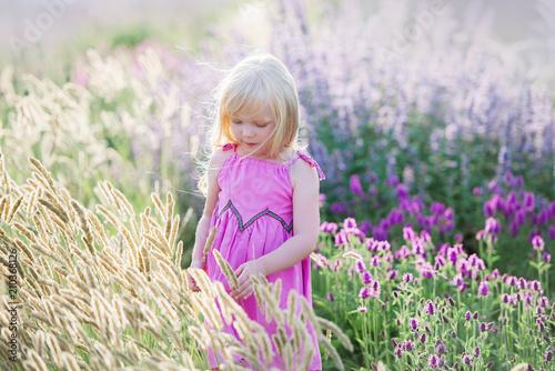 Leinwanddruck Bild Kleines Mädchen, welches das Lavendelfeld betrachtet