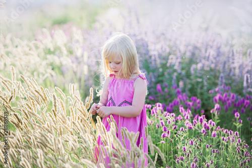 Leinwanddruck Bild Porträt des netten kleinen Mädchens steht auf einem Lavendelgebiet still