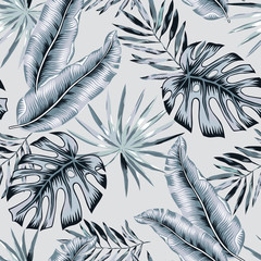 Gray banana, monstera palm leaves background. Vector seamless pattern. Tropical jungle foliage illustration. Exotic plants greenery. Summer beach floral design. Paradise nature.