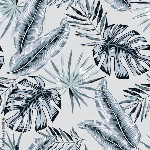 Szary banan, monstera palma opuszcza tło. Wektorowy bezszwowy wzór. Ilustracja liści tropikalnej dżungli. Egzotyczne rośliny zieleni. Letnia plaża kwiatowy wzór. Rajska natura.