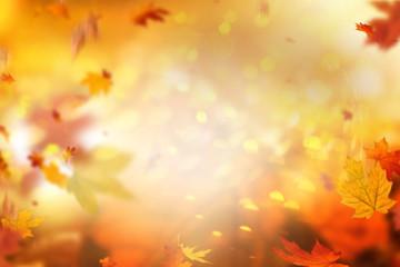 Herbsthintergrund Overlay