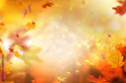 Nakładka w tle jesień
