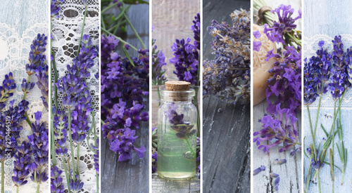 lavender cosmetics, fresh as flowers