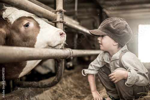 canvas print picture Junge im Kuhstall