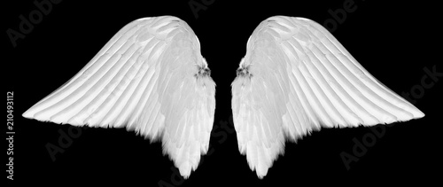 White angel wings isolated on black background - 210493112