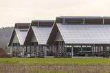 Three giant barns at factory farm