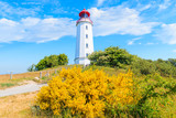 Dornbush lighthouse in spring landscape with flowers on northern coast of Hiddensee island, Baltic Sea, Germany
