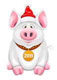 Cartoon Piggy - 210513731