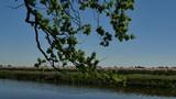 Canale d'acqua in Olanda