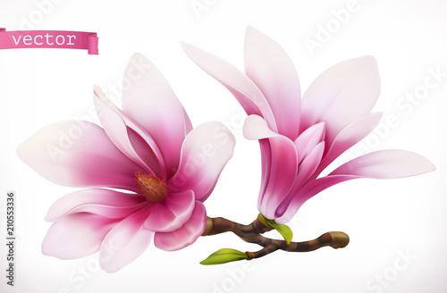 Poster Magnolia. 3d realistic vector icon