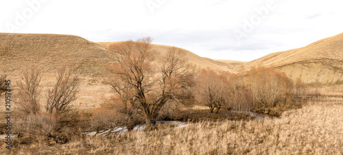 Fotobehang Wit Early spring landscape with dried herbs, mountains