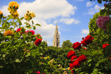 Bell tower of St. Stephen's Cathedral, Vienna - 210597581