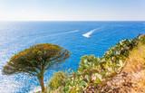 vue sur mer, paysage méditerranéen, Costa Brava, Espagne  - 210620147
