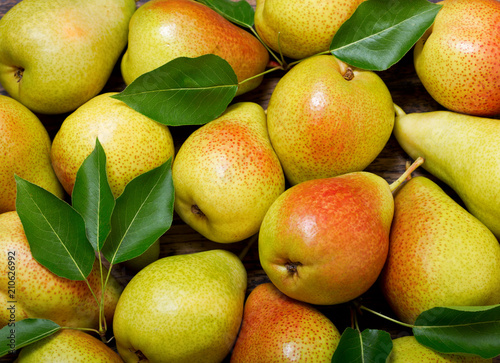 Wall mural fresh pears with leaves, top view