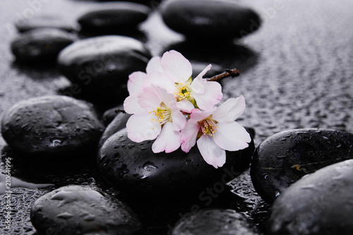 Aluminium Spa spa concept-cherry flower, candle and black wet pebbles