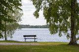 Empty bench on the lakeside. Beautiful view to the sea or lake. Single tree next to the chair. Finnish summer evening. - 210652900