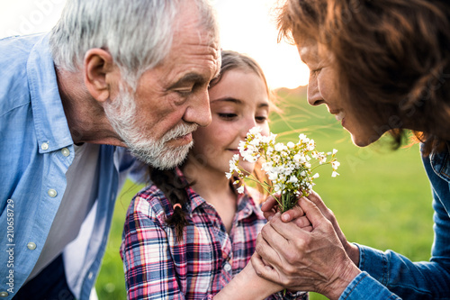 Leinwanddruck Bild A small girl with her senior grandparents smelling flowers outside in nature.