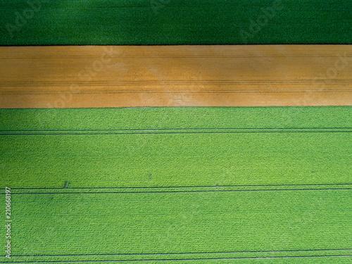 Luftaufnahme von verschiedenen landwirtschaftlichen Feldern - 210668197