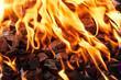 Leinwanddruck Bild - Orange wild fire burning on black coal and ash, prepared for barbecue grill